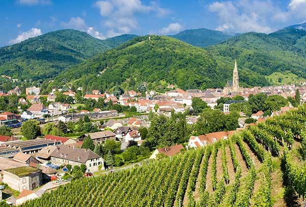 Vineyards in the Alsace region