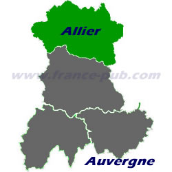 Department map of Allier